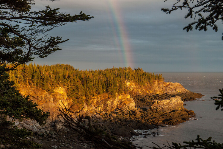 Top 10 Coastal Hikes in New Brunswick Image